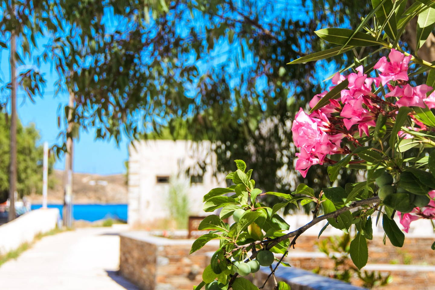 Relax Economically In Serifos Nearby The Beach